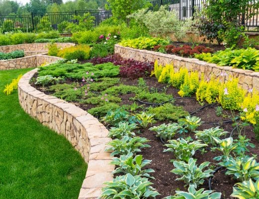 Landscaping Ideas to Compliment Your New Lawn